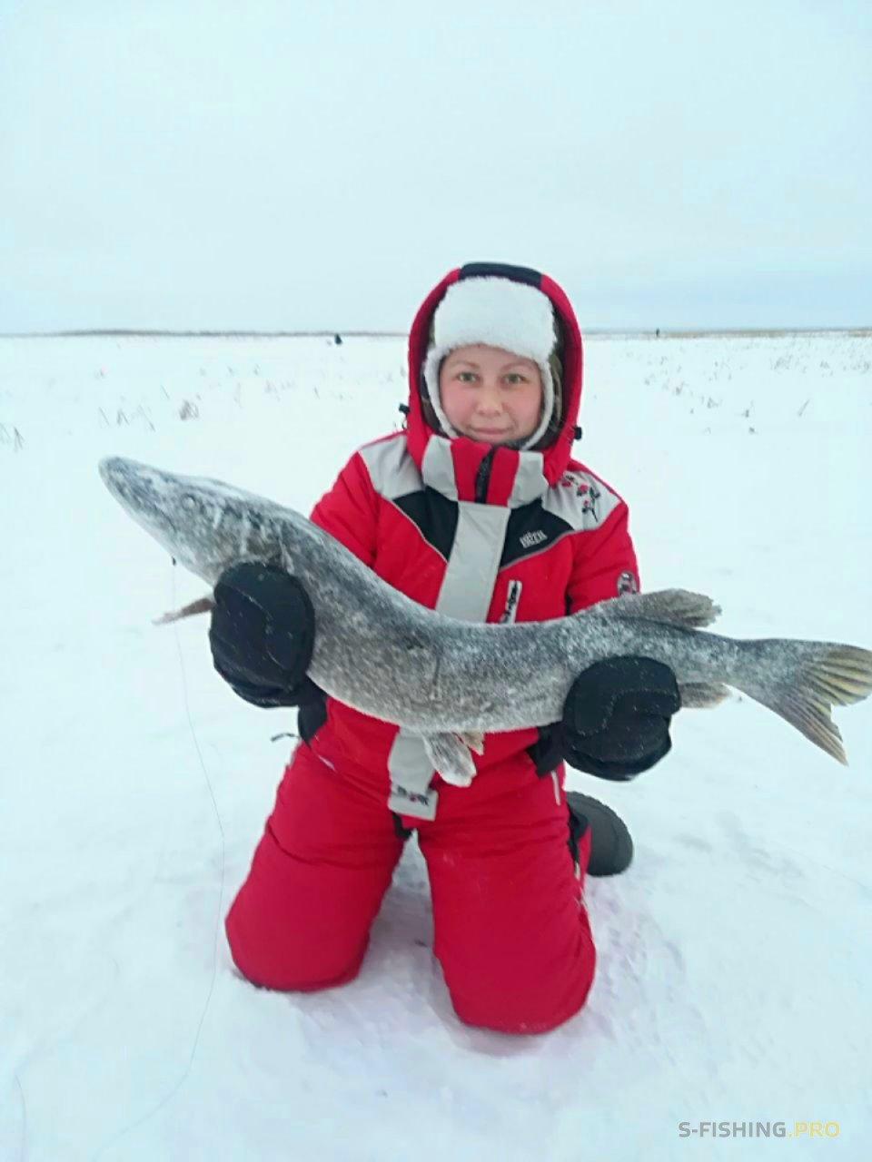 Отчеты с водоемов: Прекрасный зимний денёк с блёсенкой Detonatorа
