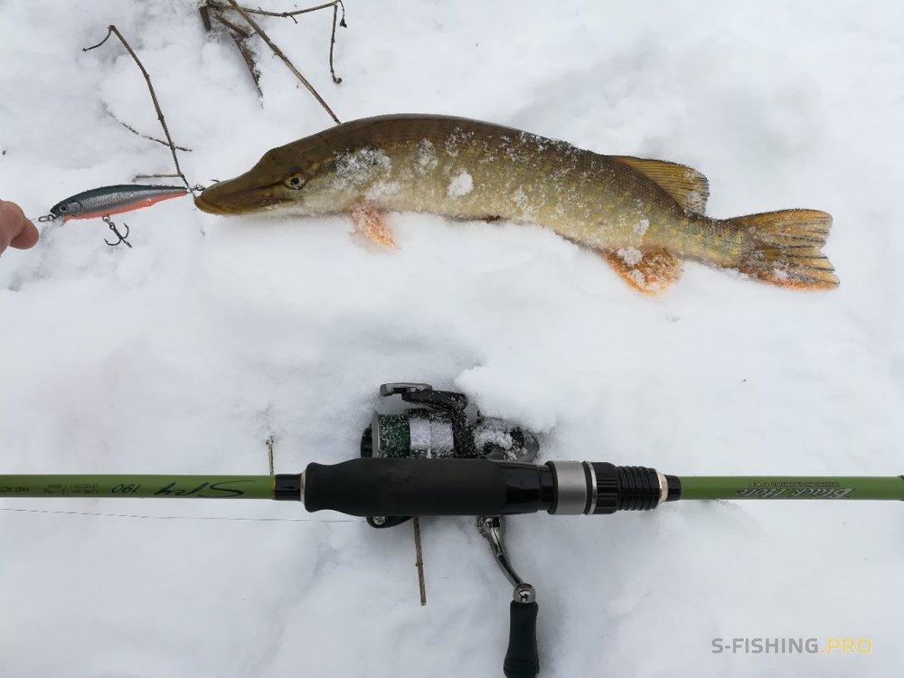 Black Hole: Интересная рыбалка на малой реке