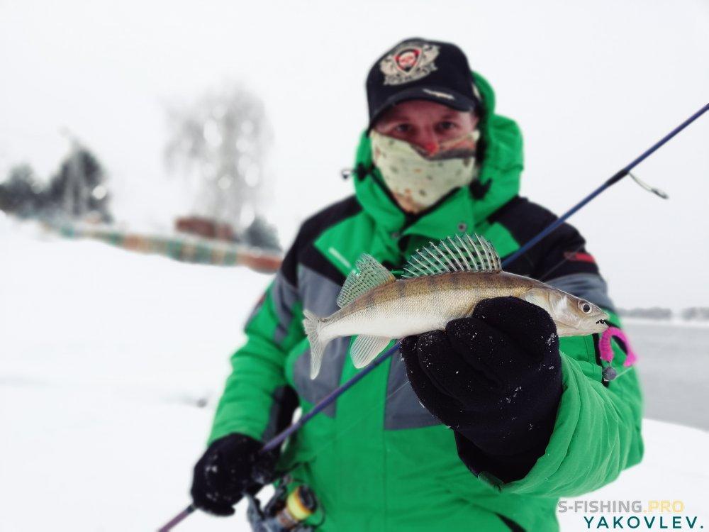 Блог им. ArtemYakovlev: Окунёвая рыбалка