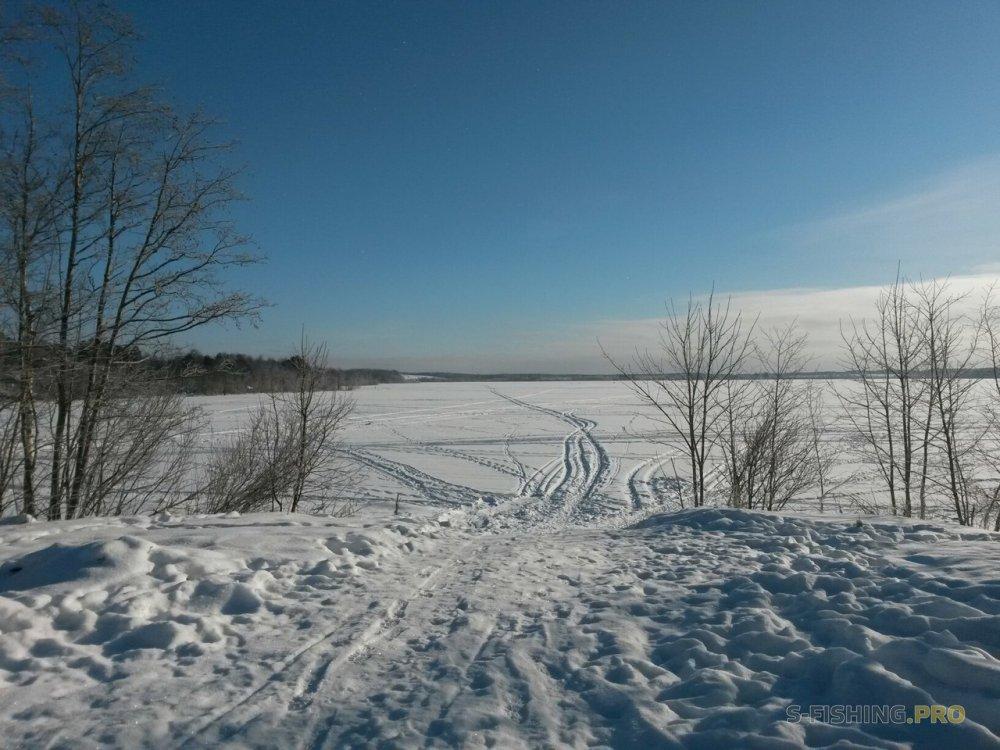 Отчеты с водоемов: Тренировка на Мичуринском