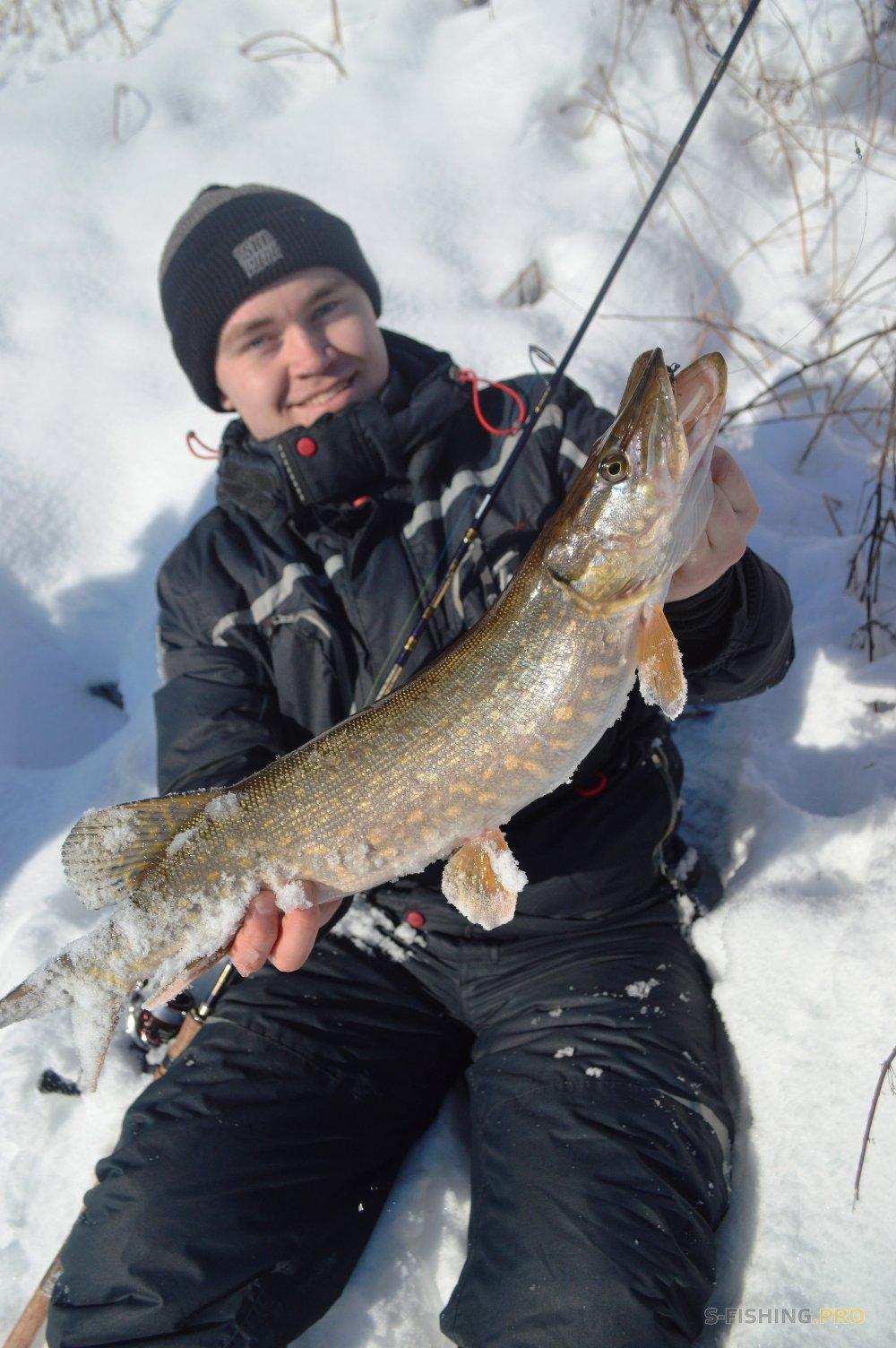 Отчеты с водоемов: Рыбалка 23 февраля на малых реках МО