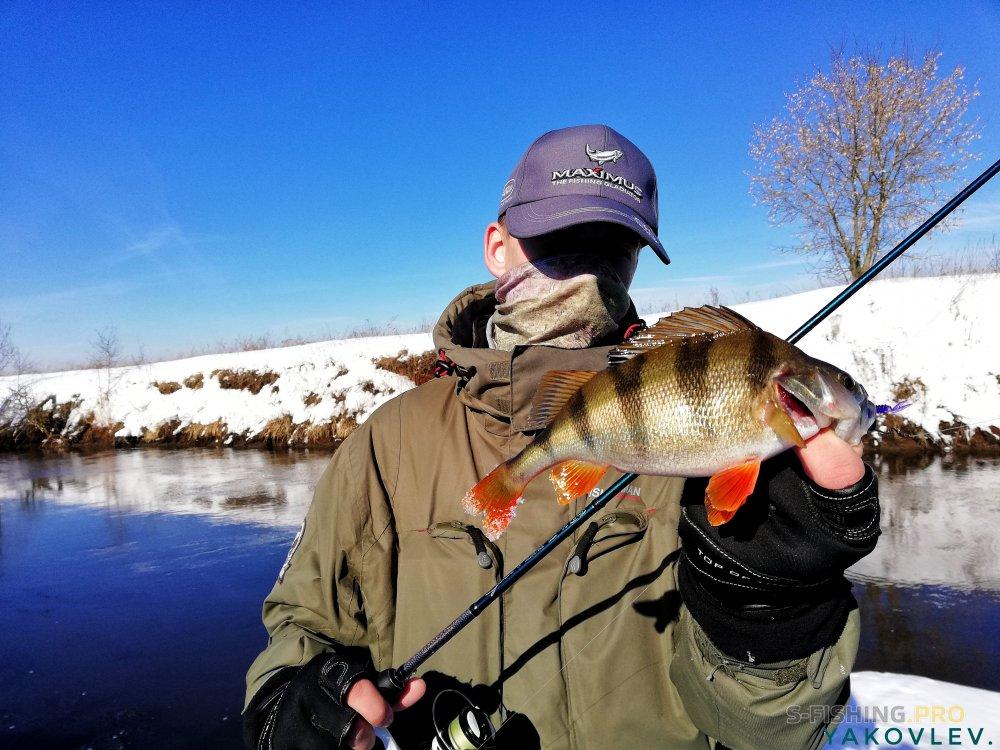 Блог им. ArtemYakovlev: Хищники малой реки