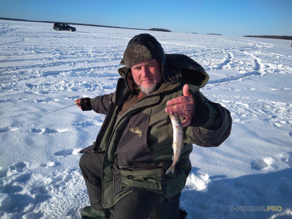 Отчеты с водоемов: История о том, как мы жрали креветок и ловили корюха.