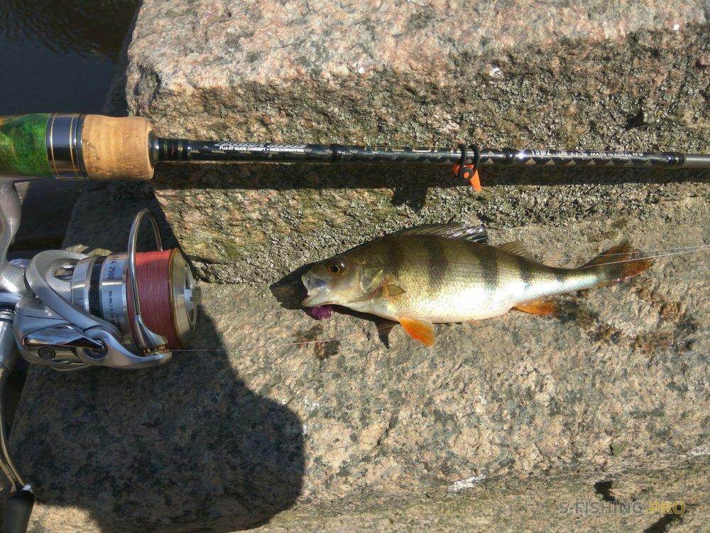 World Fishing Tackle: Начинай сезон в правильной компании и да прибудет с тобой клёв