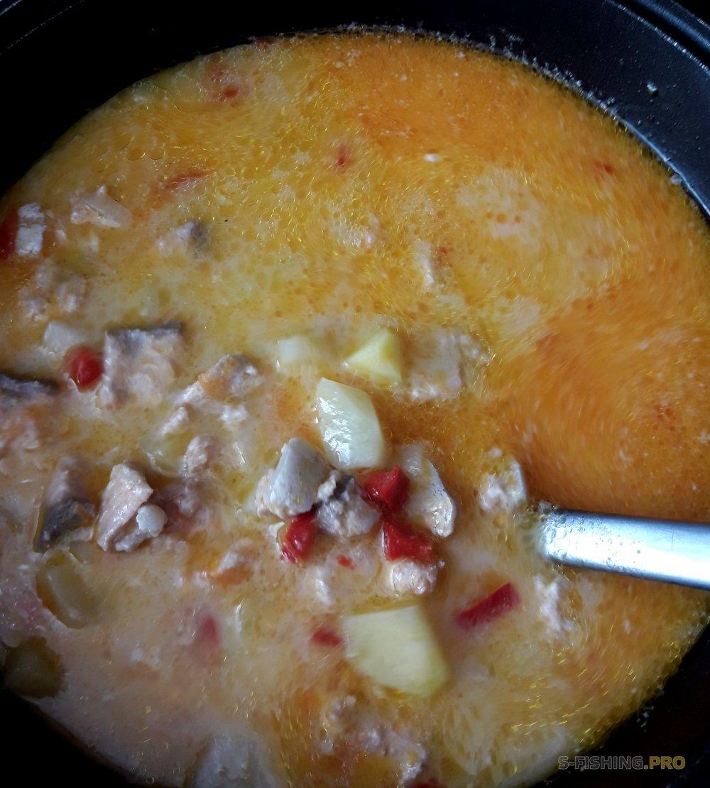 Рецепты: Сырный суп из радужной форели.
