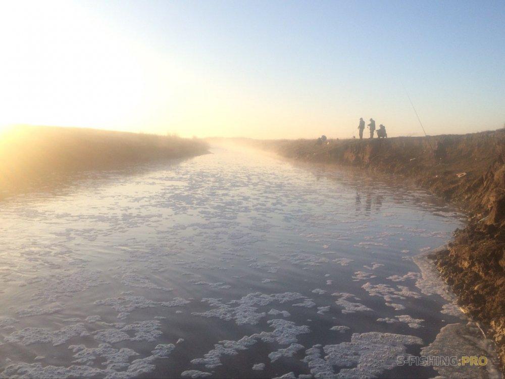Отчеты с водоемов: Утренний микроджиг