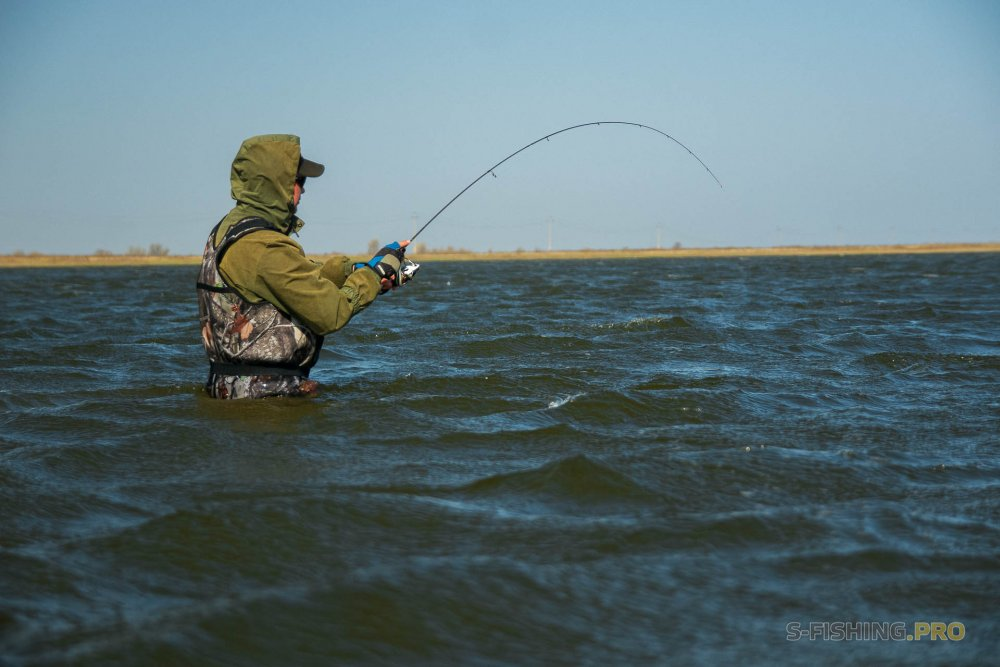 Отчеты с водоемов: Эмоциональная рыбалка