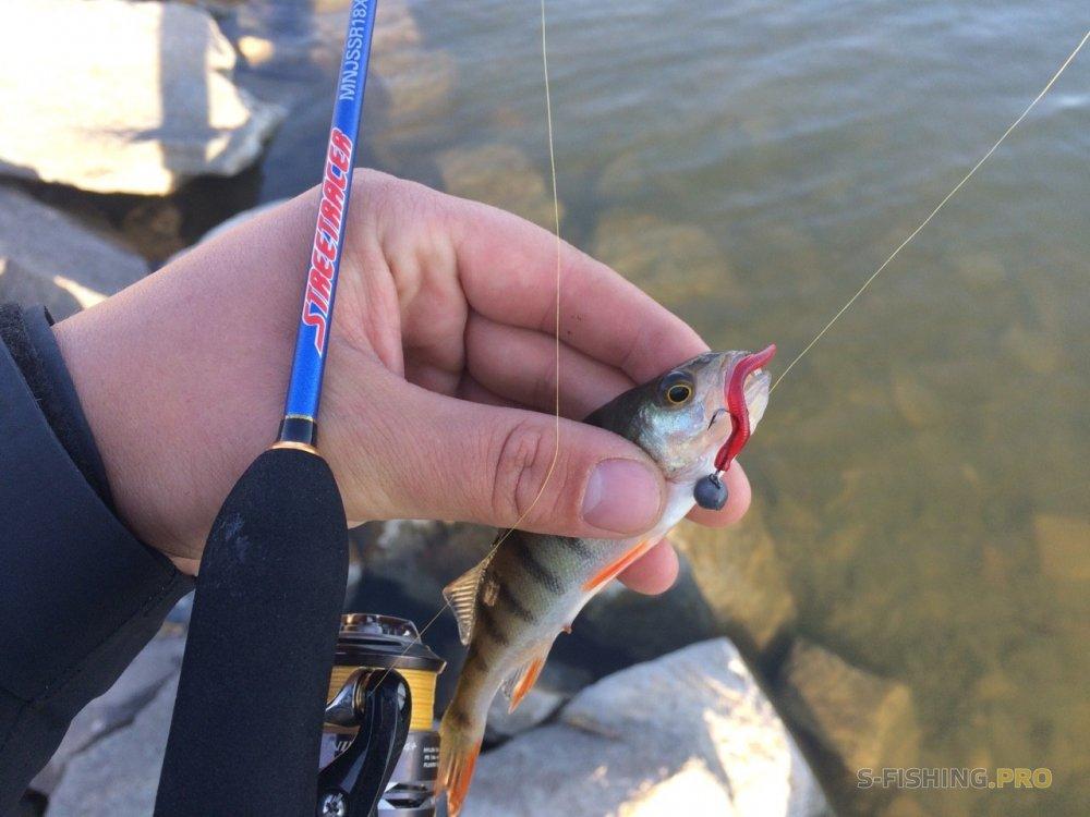 Микроджиг и все что с ним связано: Компактная рыбалка