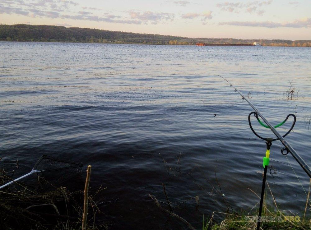 Блог им. PapaPodsekai: Лучшая рыбалка на фидер