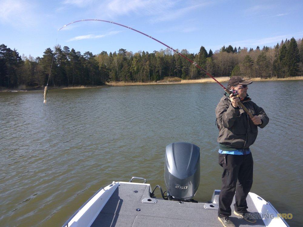 World Fishing Tackle: Размер не имеет значения (часть 2)