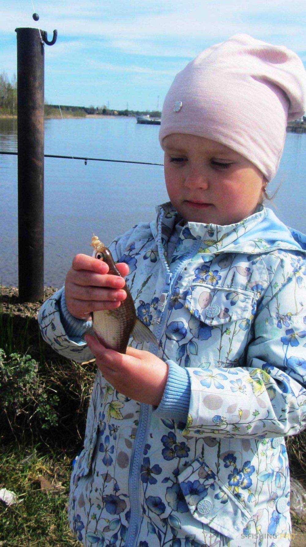 Отчеты с водоемов: Весенняя рыбалка в Ладоге: запрещённые рыбы клюют!