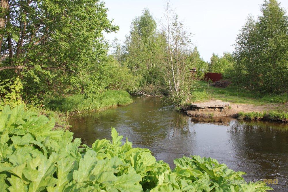 Отчеты с водоемов: Каннельярви - или простая рыбалка.