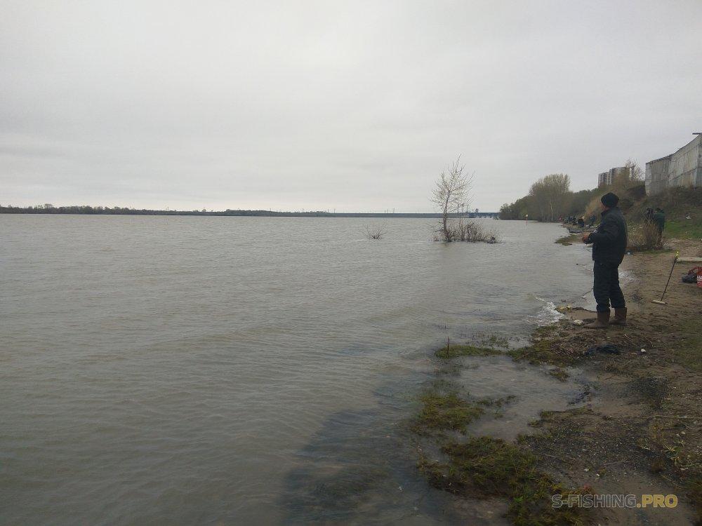 Отчеты с водоемов: В ожидании тепла с Stile Pro на берегу Оби