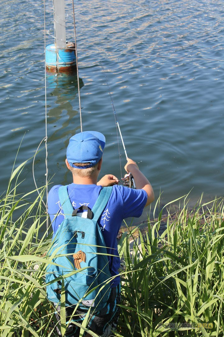Отчеты с водоемов: Парк Героев-пожарных: микруха и воблеры