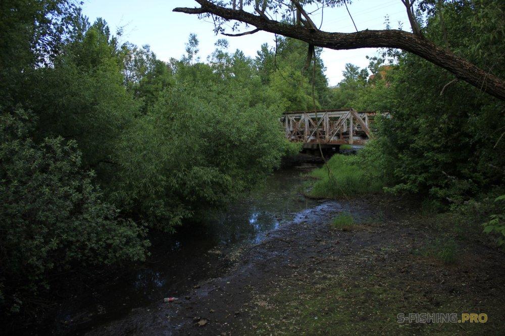 Отчеты с водоемов: Щучка и голавлик на Черной Речке