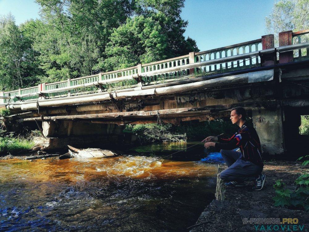 Блог им. ArtemYakovlev: Малая река и полосатый дуплет