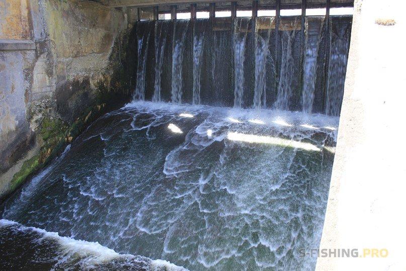 Отчеты с водоемов: Оредеж (Вырица): 2 дня - 4 рыбалки!