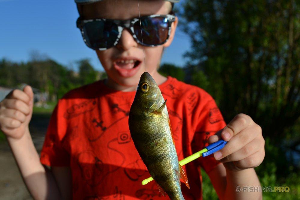 Отчеты с водоемов: Сын хочет на рыбалку.
