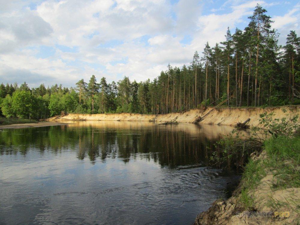Отчеты с водоемов: Знакомство с Мещёрой, или открытие спиннингового сезона.