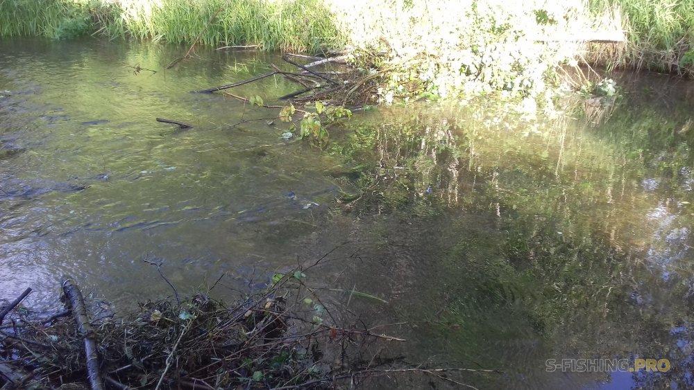 Отчеты с водоемов: Как ломаются палки?