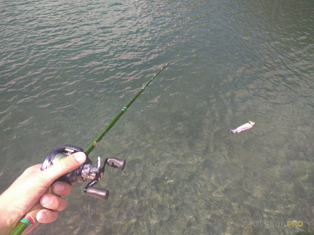 World Fishing Tackle: Buen día - gran pesca