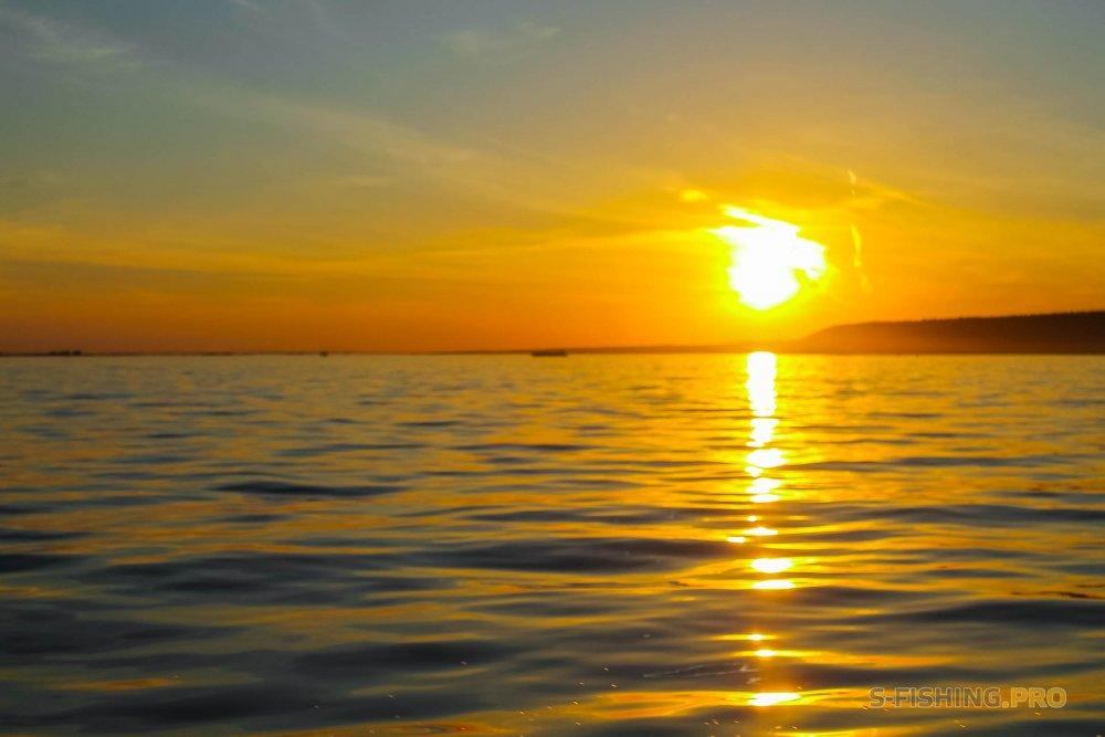 Отчеты с водоемов: С приходом жары