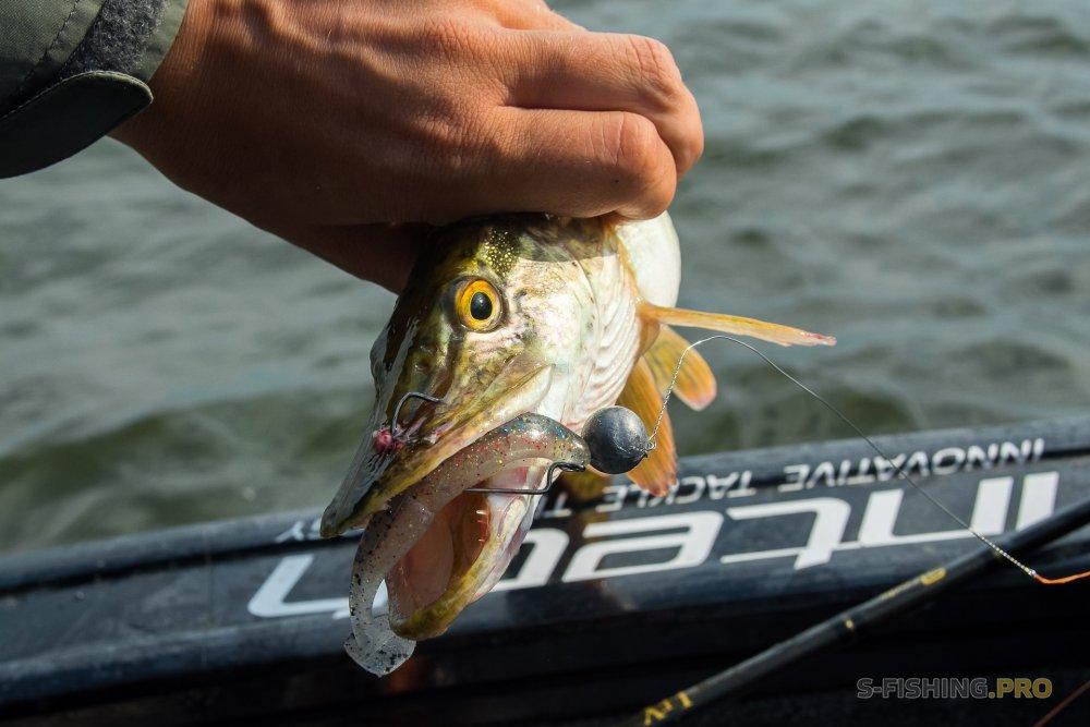 Отчеты с водоемов: Снова в поисках рыбы и подбора приманок. Рыба есть