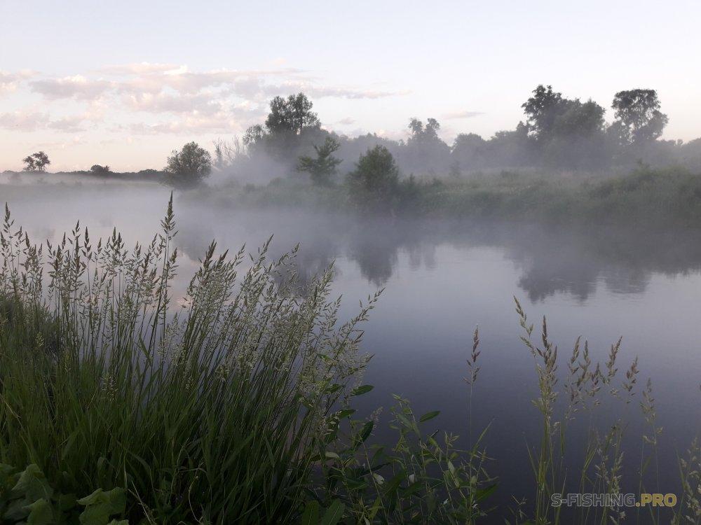 Отчеты с водоемов: Двухдневная прогулка -вечерняя и утренняя