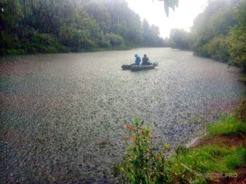 Отчеты с водоемов: Мокрые и покусанные