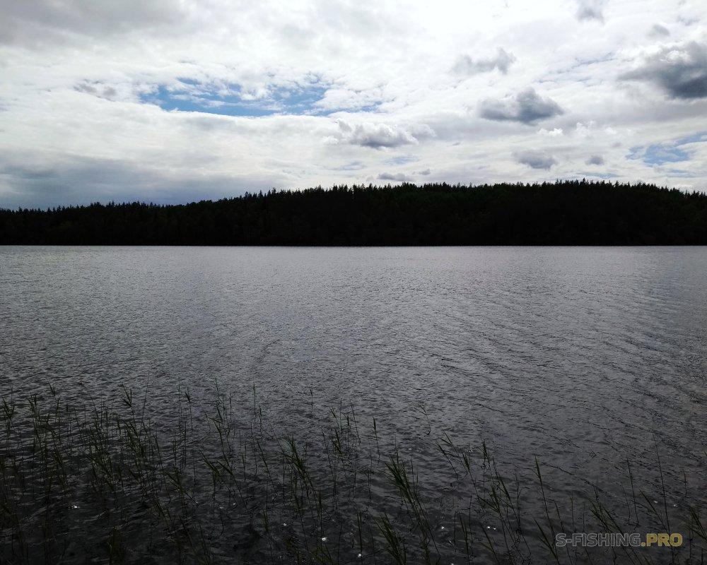 Отчеты с водоемов: Старые места