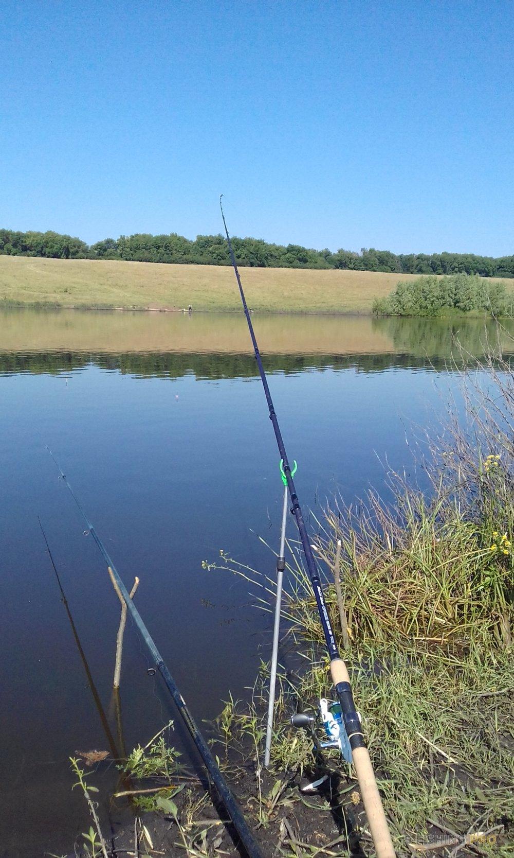 Отчеты с водоемов: Трое на пруду