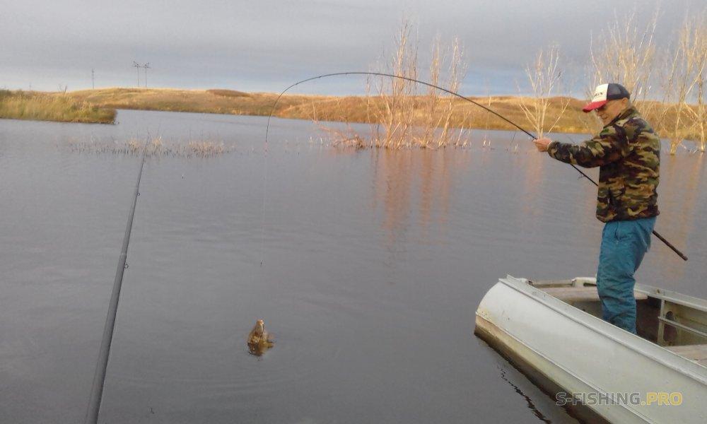 Отчеты с водоемов: ПРОСТО АНЕКДОТЫ (продолжение)