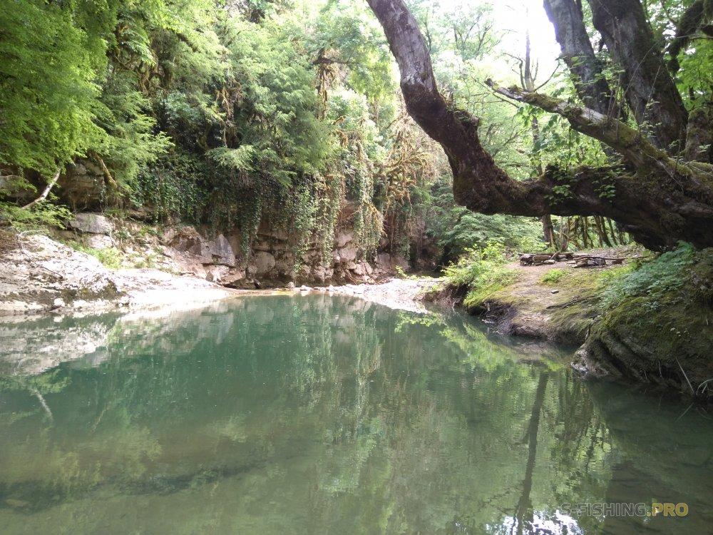 Отчеты с водоемов: В поисках кавказского голавля