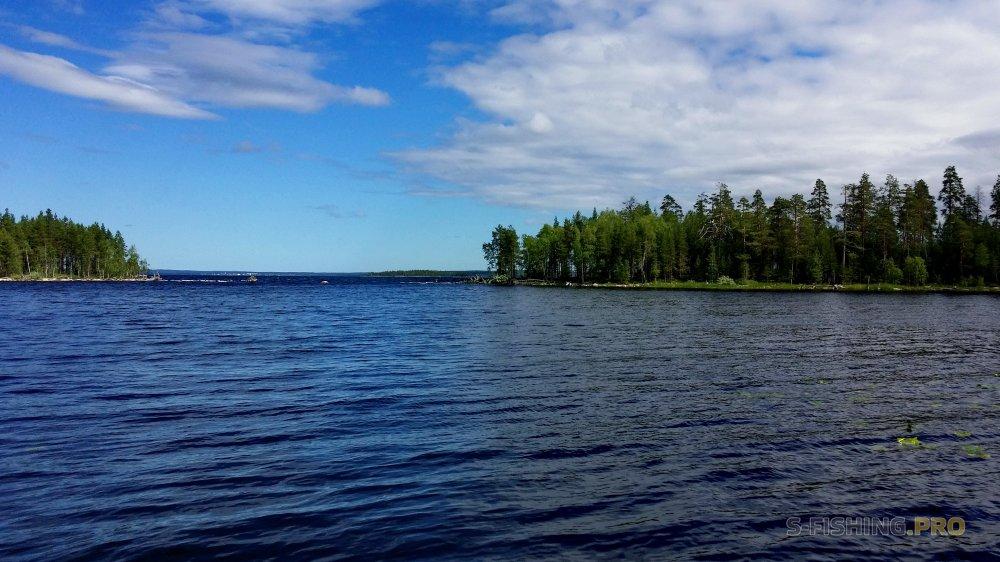 Отчеты с водоемов: Северная Карелия (2.07-9.07.2018)