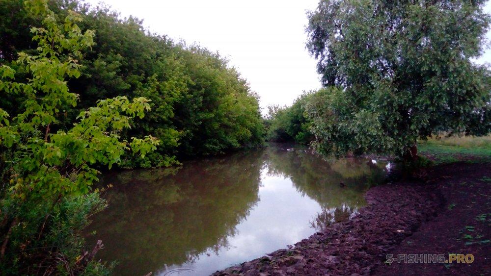 Отчеты с водоемов: Мензеля. Река из детства.