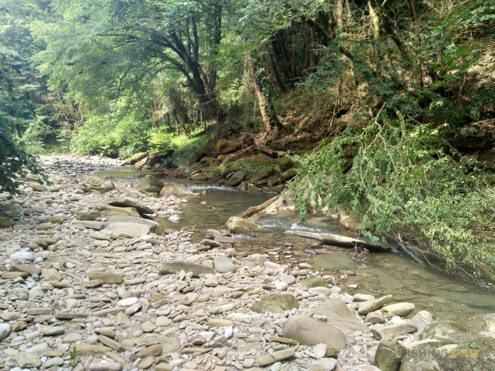Отчеты с водоемов: Осторожный кавказский голавль