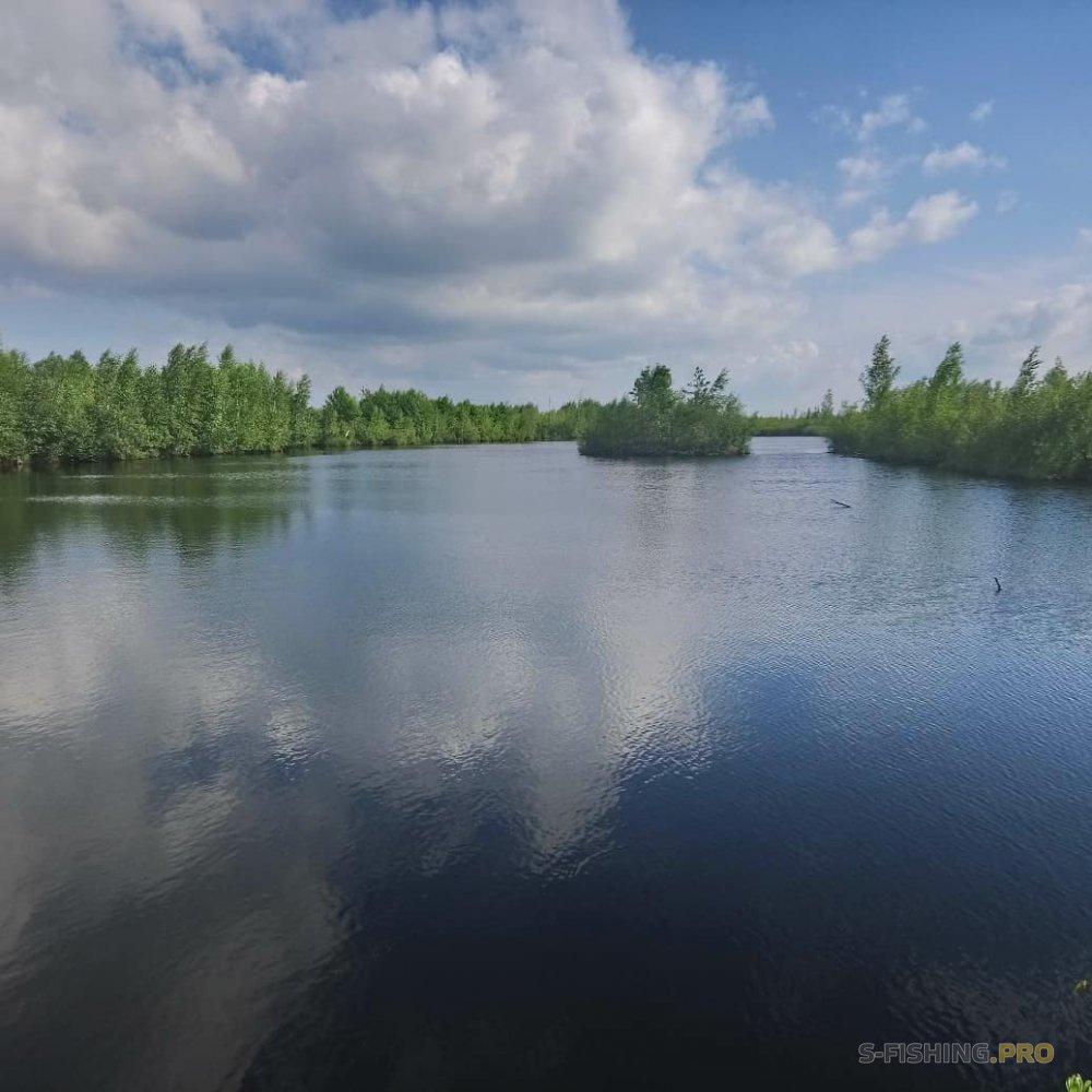 Отчеты с водоемов: Ловля в карьерах