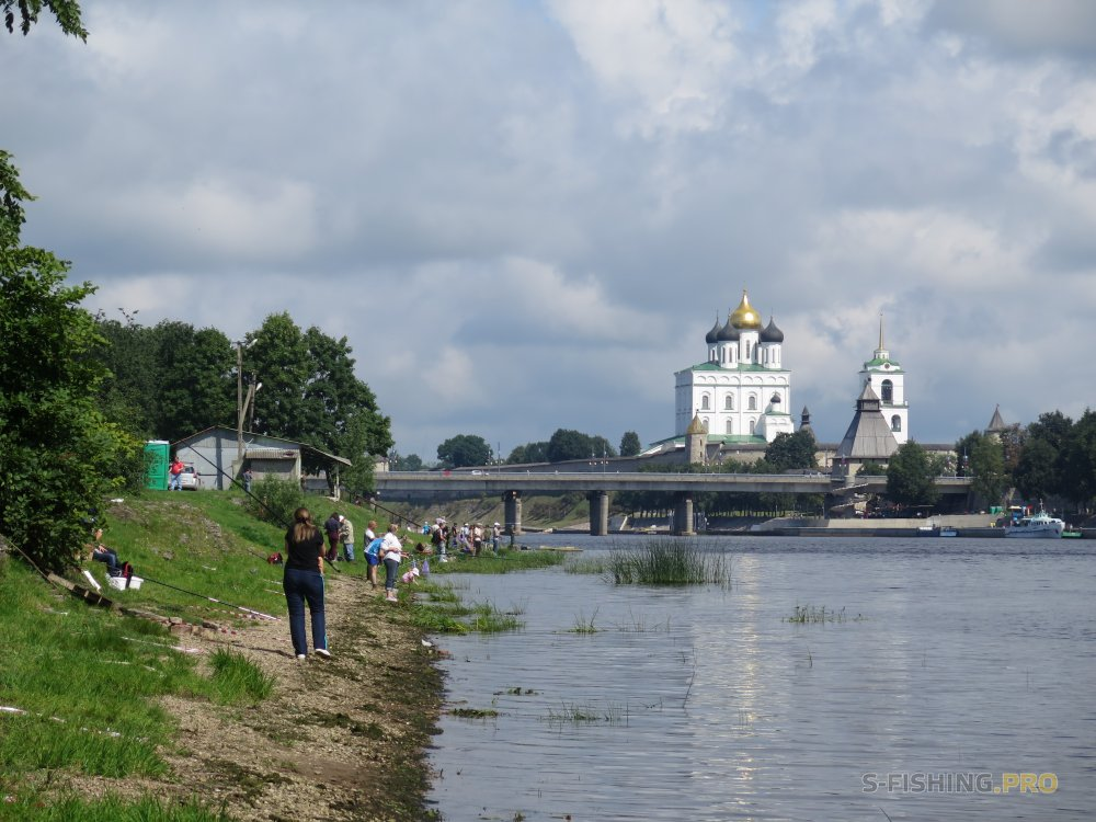 Отчеты с водоемов: ПСКОВСКАЯ УХА - 2018