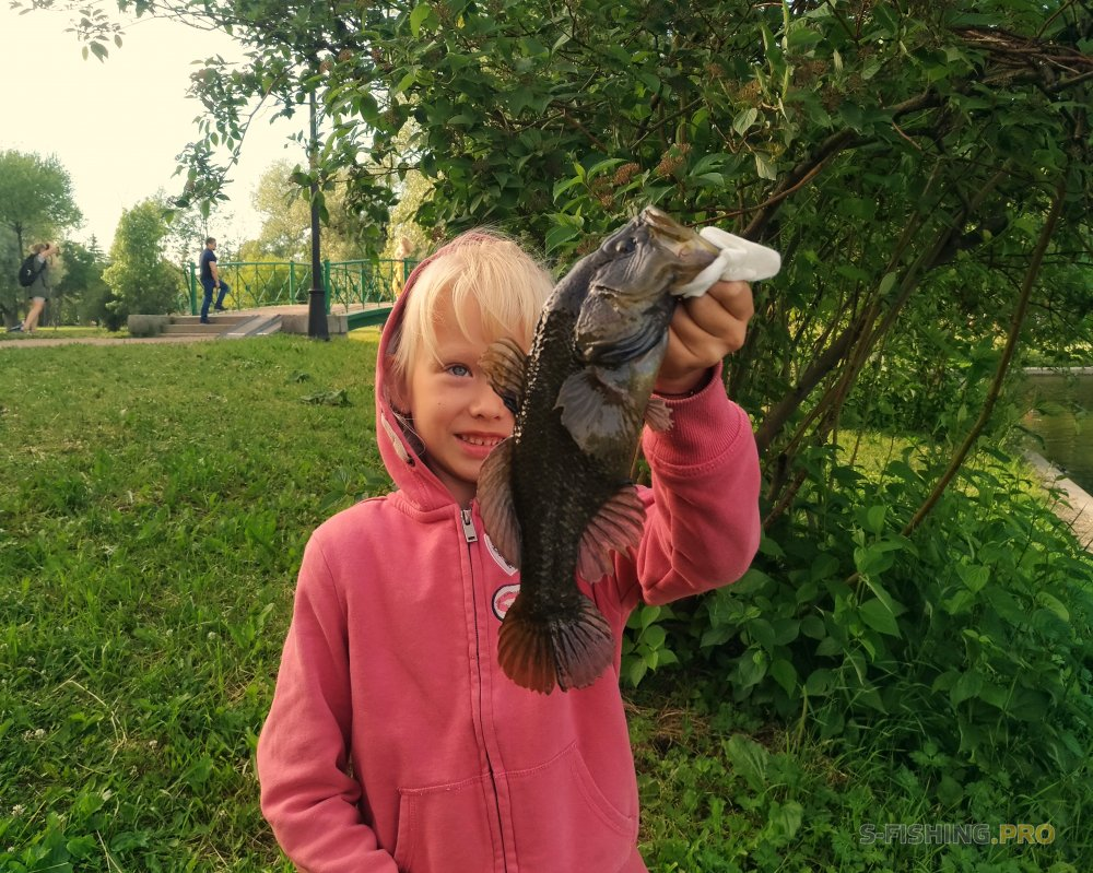 Street Fishing Online: Еще больше
