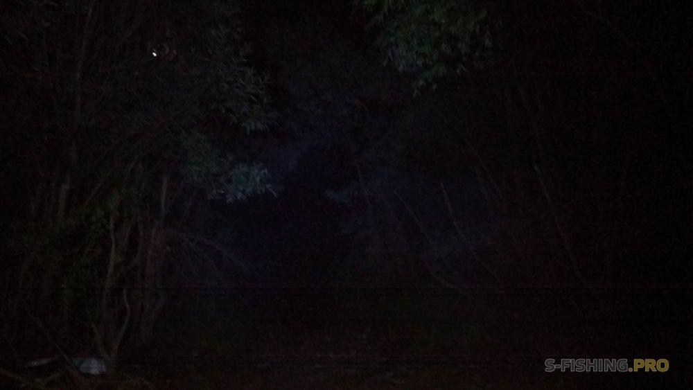 Отчеты с водоемов: Ночь.Обь.Воблер.Судак