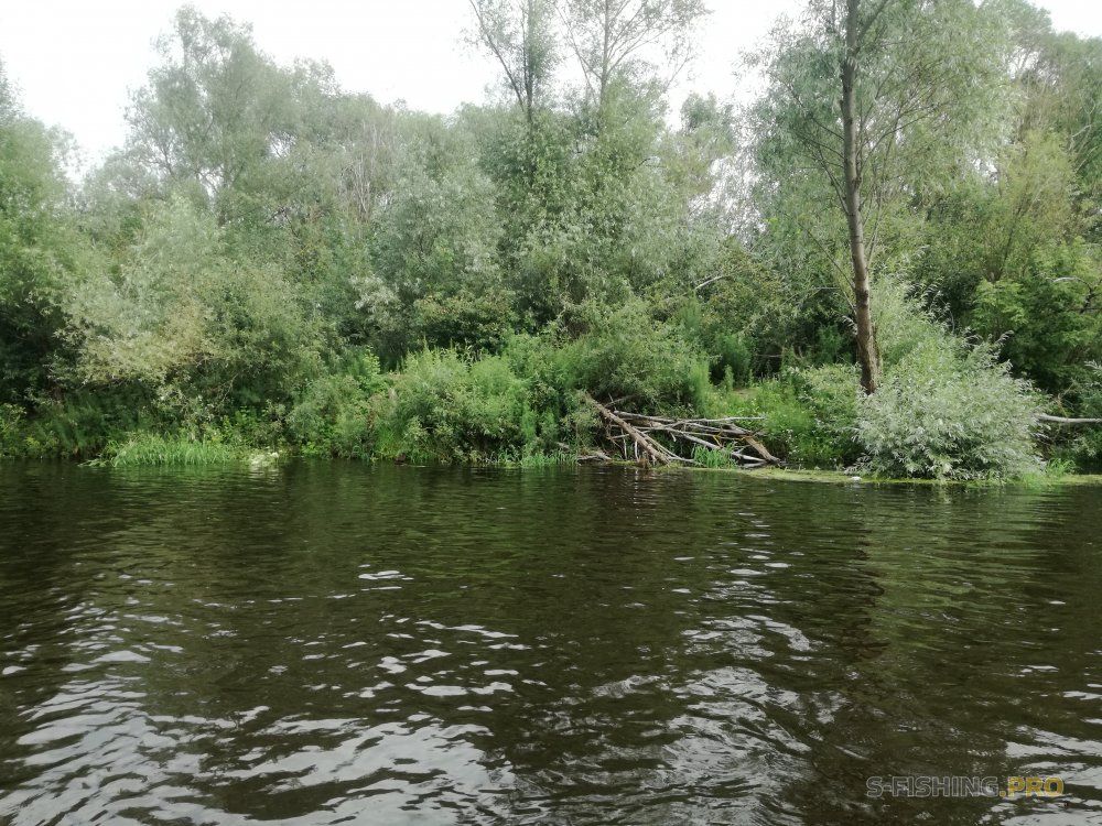 Отчеты с водоемов: Отчёт о прошедшем долгожданном сплаве