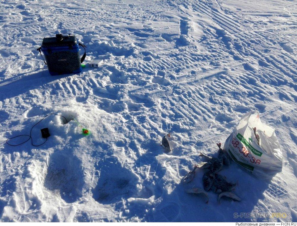 Отчеты с водоемов: Отчет о рыбалке: 04 февраля 2017 - 05 февраля 2017, Волга (Пучеж)