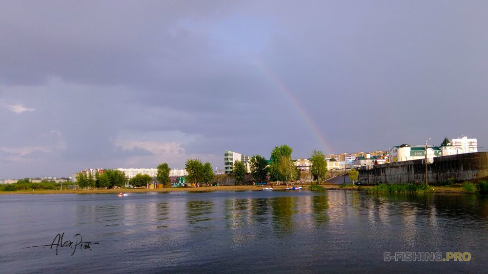 Отчеты с водоемов: После дождичка в Ильин день (четверг).