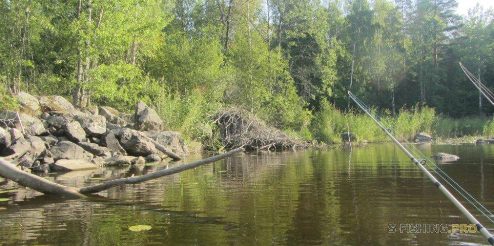 Отчеты с водоемов: В жару из Вуоксы по реке Тихая.