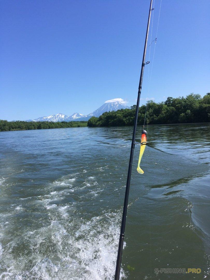 Отчеты с водоемов: Камчатский лосось