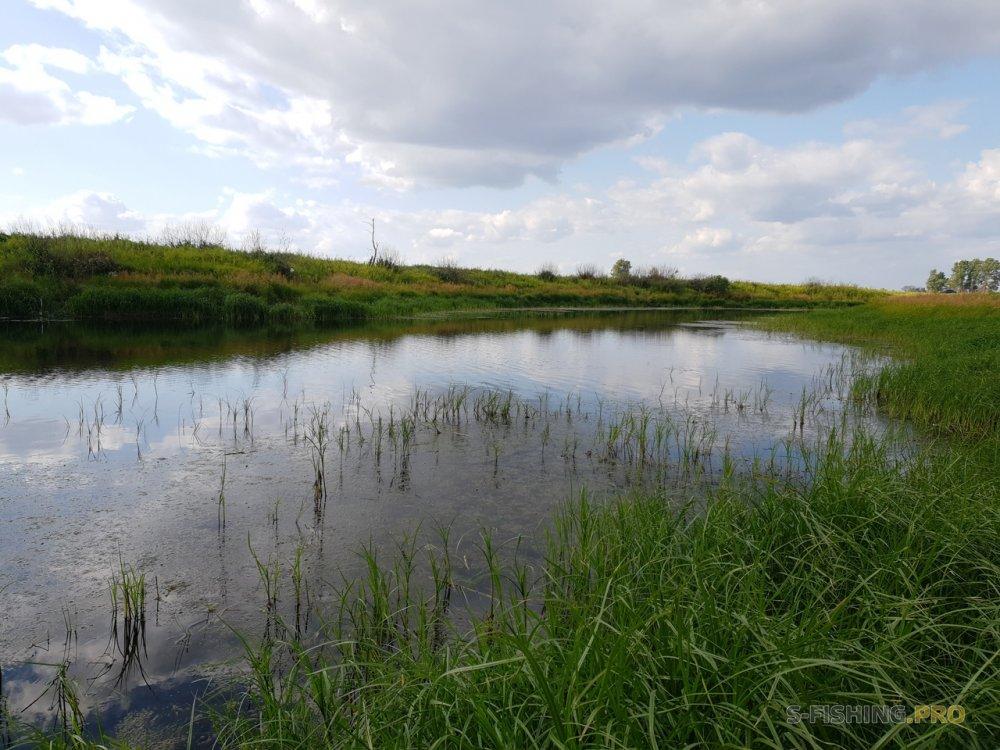 Отчеты с водоемов: C воблерами на полевое озеро