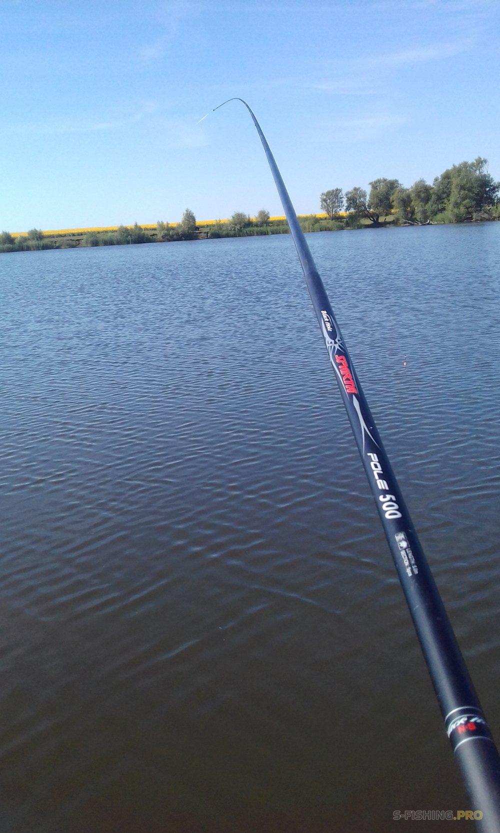 Отчеты с водоемов: СПАРТАнская рыбалка