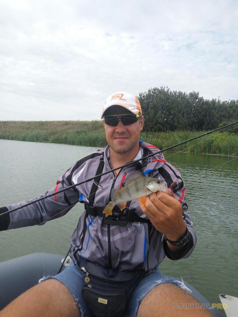Отчеты с водоемов: 4 часа рыбалки, 4 рыбы за 4 минуты