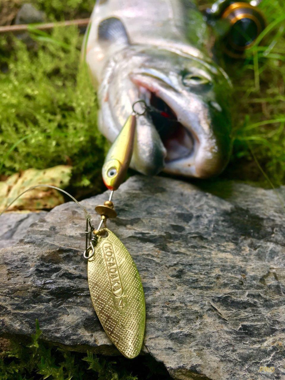 Обзоры: Вертушки kosadaka quant,испытание лососем