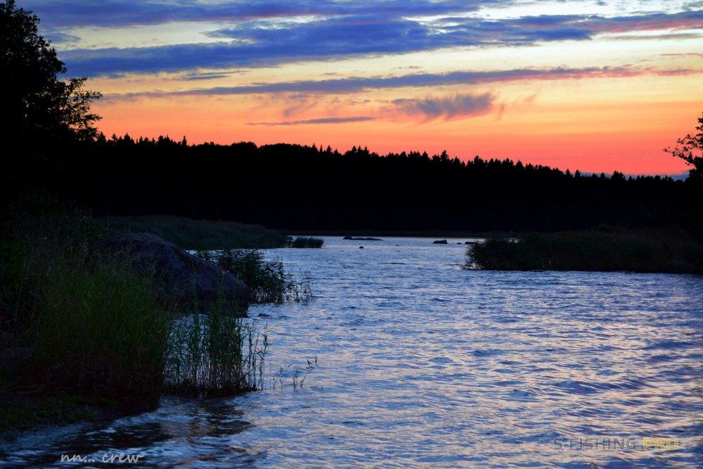 Отчеты с водоемов: Трудовая рыбалка и послание себе
